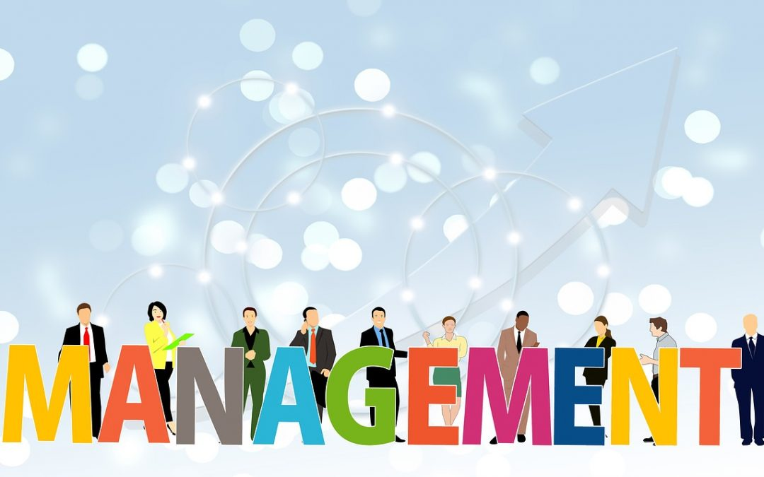 Challenges of Company Leadership